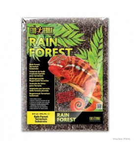 Rainforest Substrate